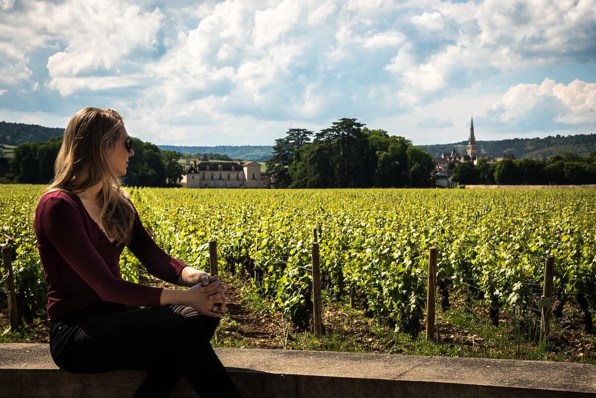 visite domaine viticole bordeaux